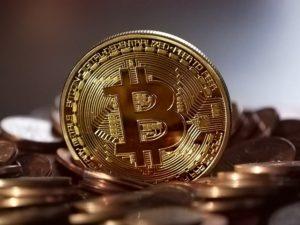 bitcoin or gold