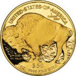 american-buffalo-back